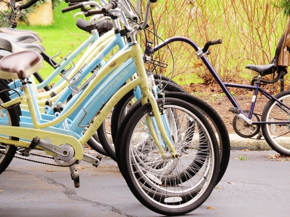 Bikes, tandem bikes, Callaway Gardens